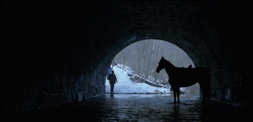 Film Freak Central The Horse Whisperer 1998 Blu Ray Disc