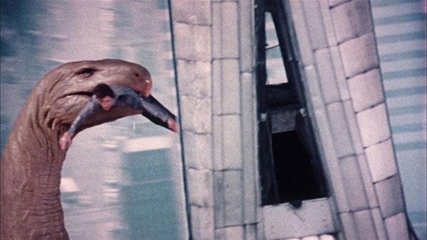 film freak central q the winged serpent  1982  blu