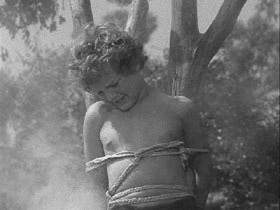 Tarzancoltreascap