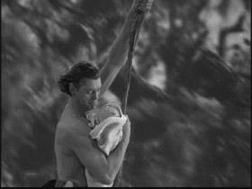 Tarzancolsoncap